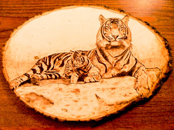 """Tiger and Cub"" - pyrography by Brandon Jones"