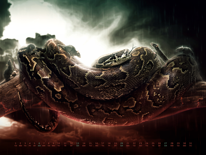 "Wallpaper Freebie for January 2013: ""Wrath of the Snake"" by You The Designer"