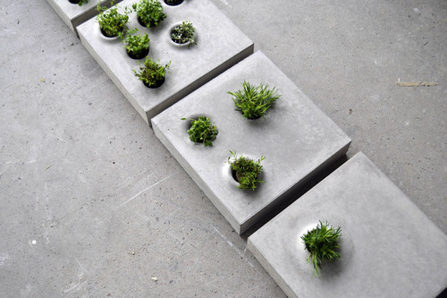 Grey to Green Pavers by Caroline Brahme