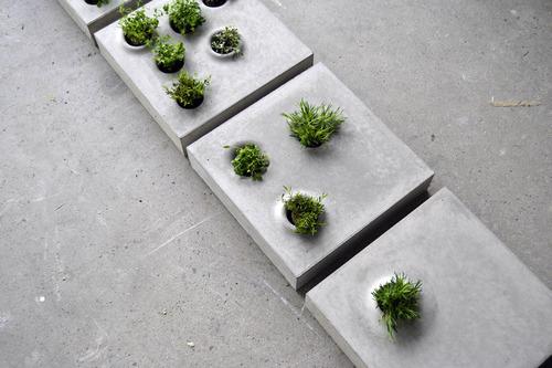 Grey to Green Pavers by Caroline Brahme