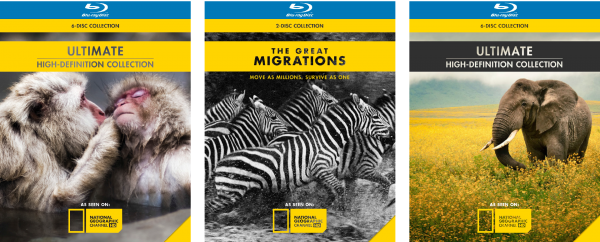 NatGeo Rebranding Project | Blue Ray Covers