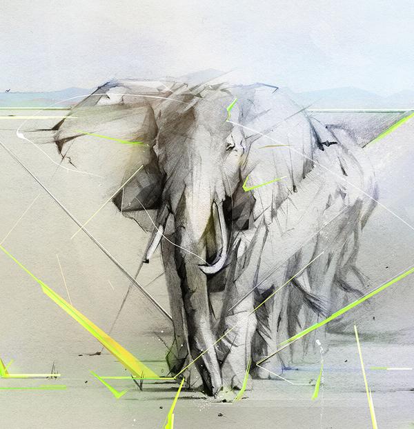 HP Wallpaper | Alexis Marcou