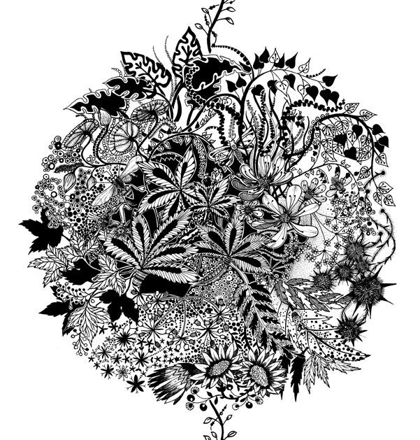 Illustration by Johanna Basford