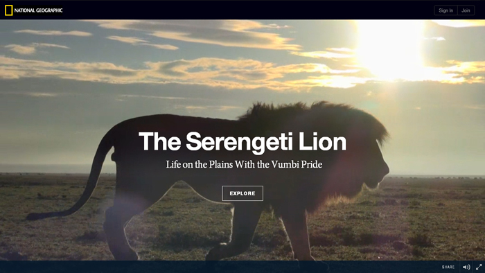 National Geographic | The Serengeti Lion