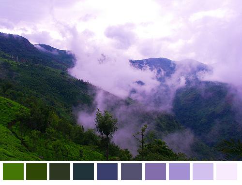 Nature-Color-Palette-005