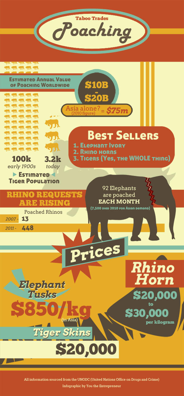 Infographic-Animals