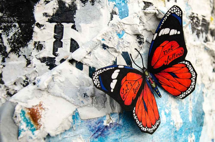 butterfly-effect-Andreas-Preis-6