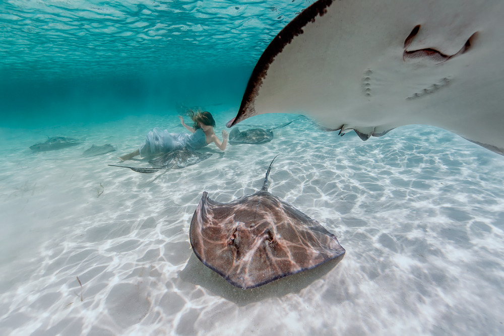 Elena Kalis Underwater Photography Stingray and Girl 3