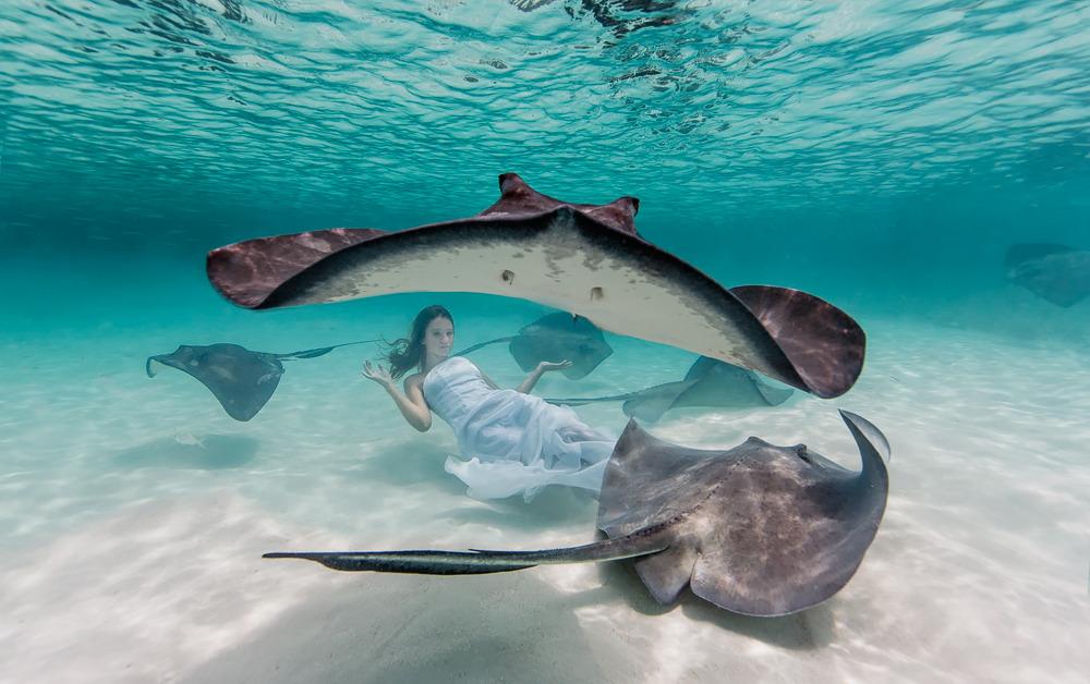 Elena Kalis Underwater Photography Stingray and Girl 4