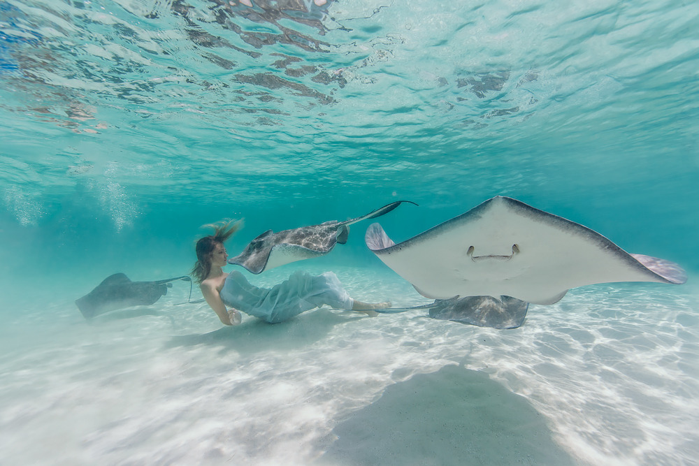 Elena Kalis Underwater Photography Stingray and Girl 5