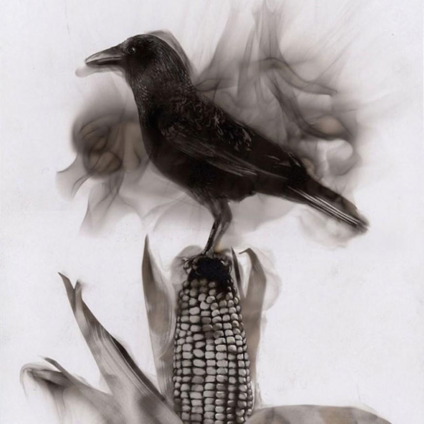 fire-paintings-soot-art-steve-spazuk-41