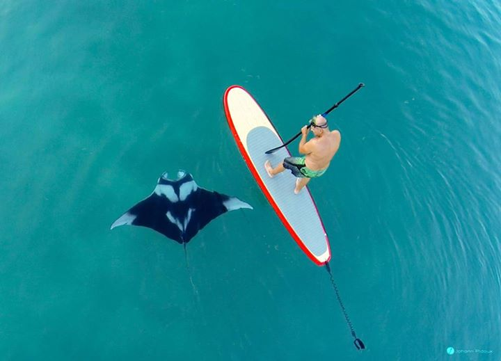 gopro paddle boarding