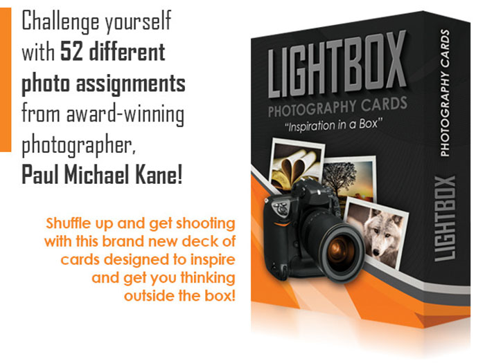 LightBox Photography Cards 01