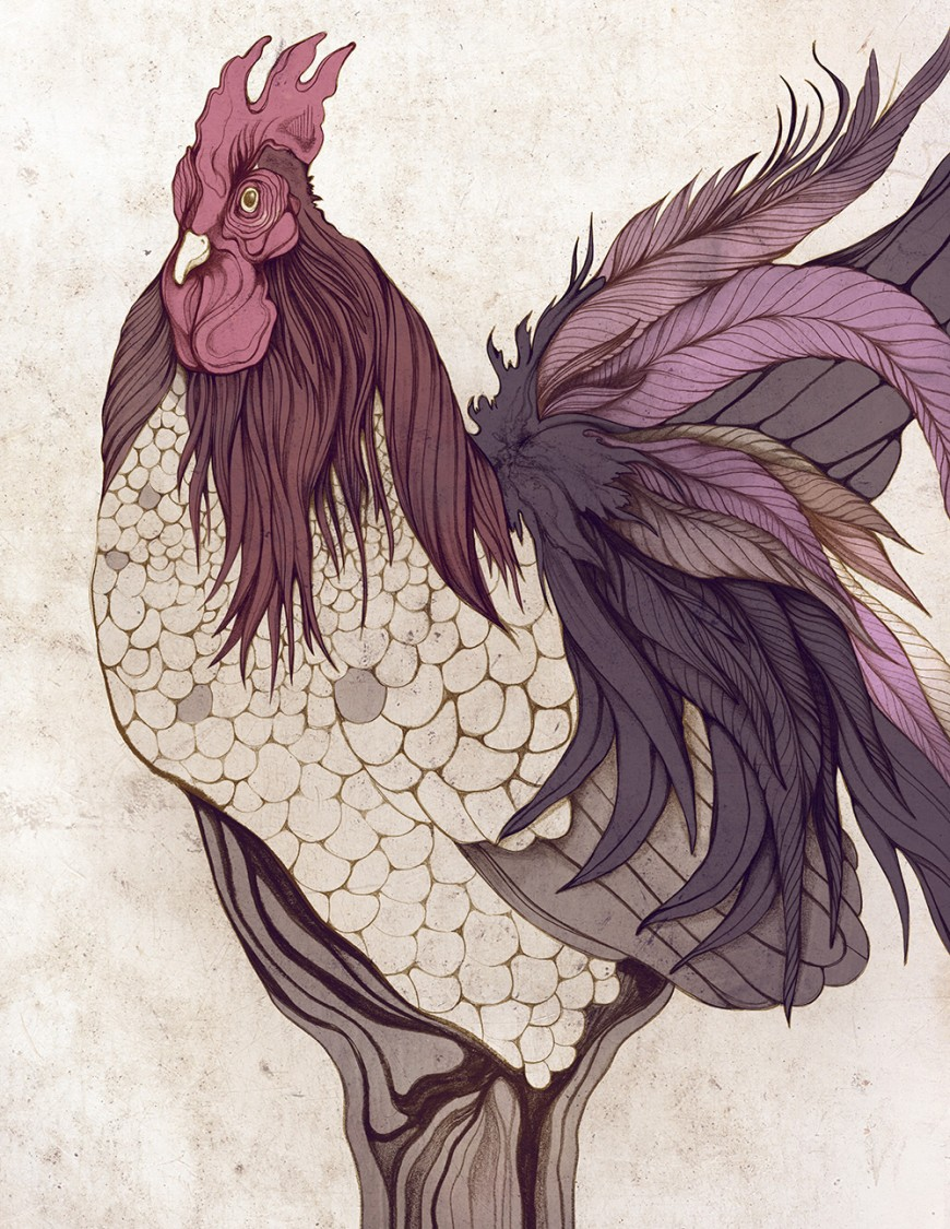 purple-rooster