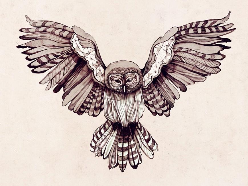wingspan-owl
