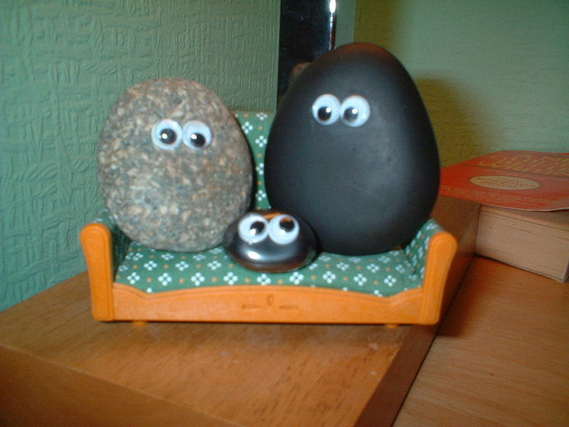 800px-Pet_rock
