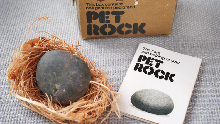 pet-rock-best-worst-products