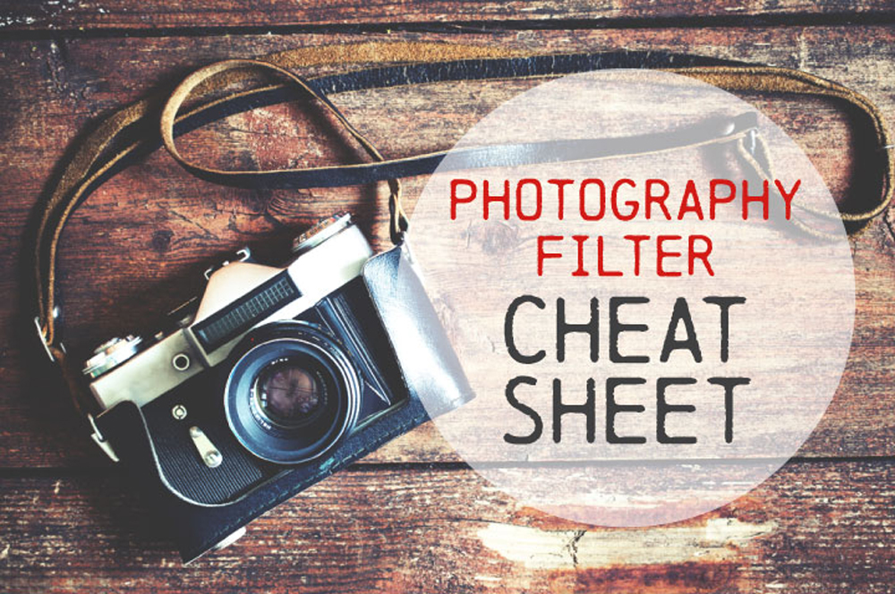Photography-Filters-Infographic-UCreative