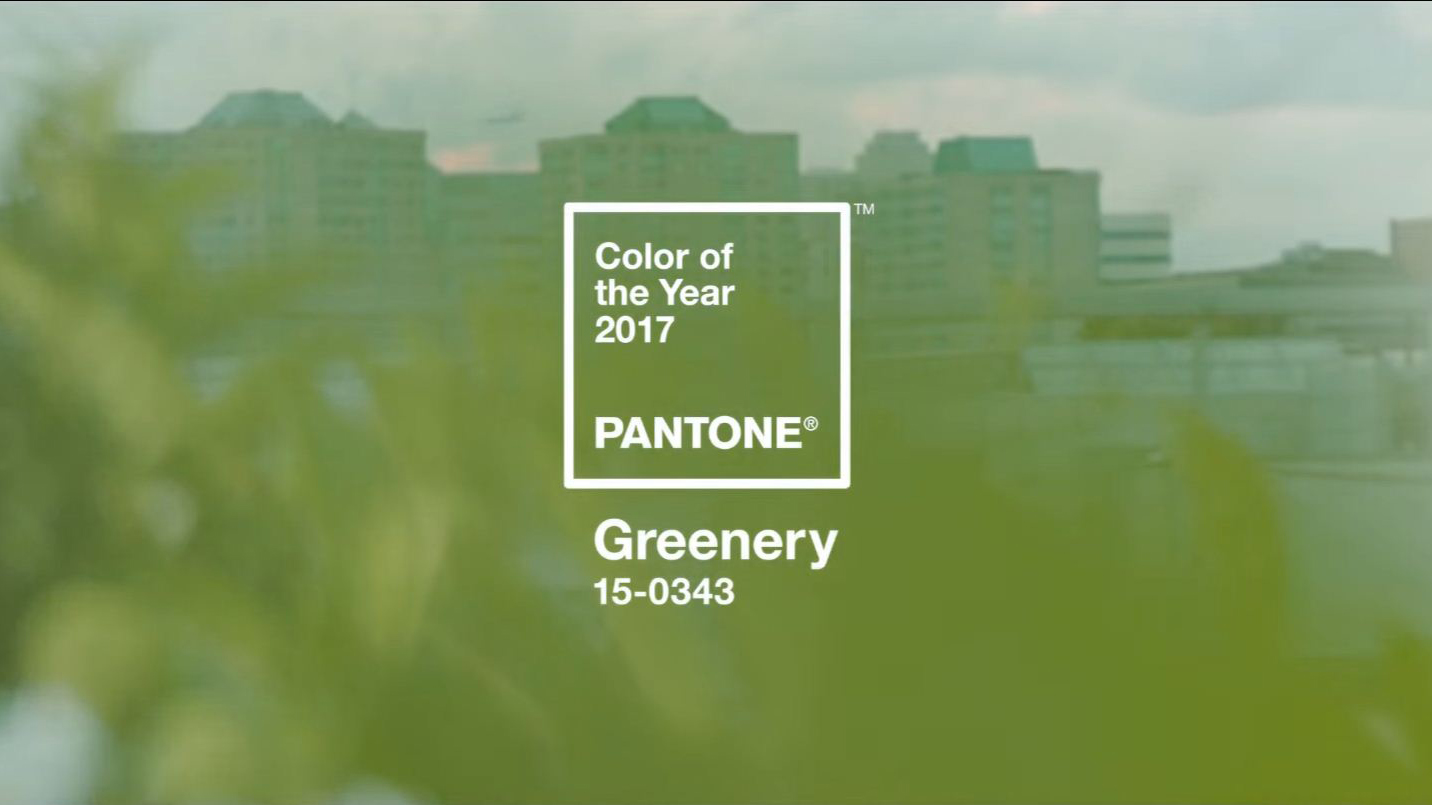 greenery is pantone 39 s 2017 color of the year. Black Bedroom Furniture Sets. Home Design Ideas